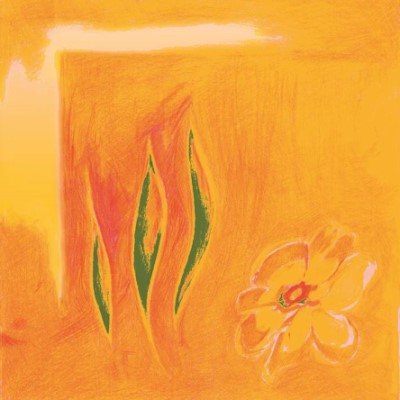 SOMMERTRAUM Servietten 40x40cm TISSUE orange - 1200Stk.