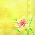 Napkins ELVIRA 40x40cm 1/4fold TISSUE 3-ply yellow - 600pcs.