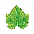 WINE LEAF Coasters Ø120mm 80g SAUGSTOFF yellow/green - 1000pcs.