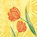 SALLY Napkins 40x40cm LINCLASS-Airlaid yellow/orange - 300pcs.