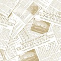 Napkins NEWSPAPER 33x33cm 1/4fold TISSUE beige - 600pcs.