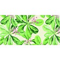 Table Runners JANE 40cmx24lfm LINCLASS-Airlaid green - 4pcs.