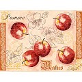 MALUS Place Mats 40x30cm LINCLASS-Airlaid red - 600pcs.