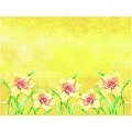 Place Mats ELVIRA 40x30cm LINCLASS-Airlaid yellow - 600pcs.