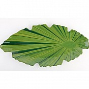 Leaf NATURAL COLLECTION 52x25x4cm MELAMIN green - 1pc. 1
